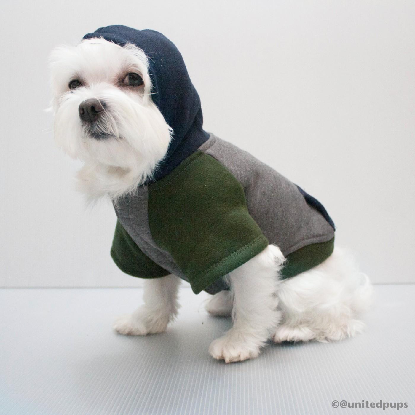 gray_hoodie2